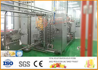 Industrial Coconut  Milk Processing Line SS304 turnkey 3T/H Capacity