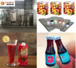 SS304 Turnkey Waxberry Beverage Juice Making Machine Processing Line CFM-B-07