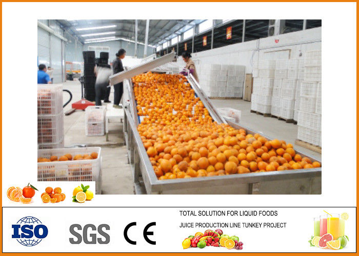 SS304 Turnkey 5T/H Orange Juice Production Line
